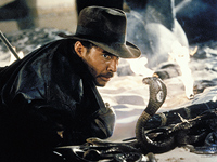 Indiana Jones and a snake